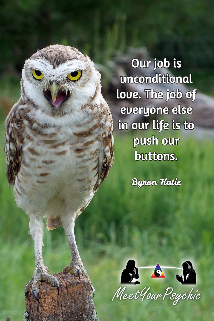 """""""Our job is unconditional love. The job of everyone else in our life is to push our buttons."""" Byron Katie"""