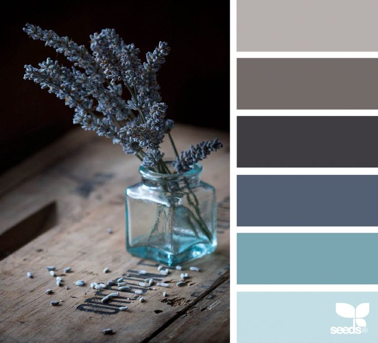 Colors | Combos | Palettes | Color Snap App | Sherwin-Williams | Grapy | Swanky Gray | Baby Blue Eyes | Needlepoint Navy | Soar | Anchors Aweigh | Black Bean