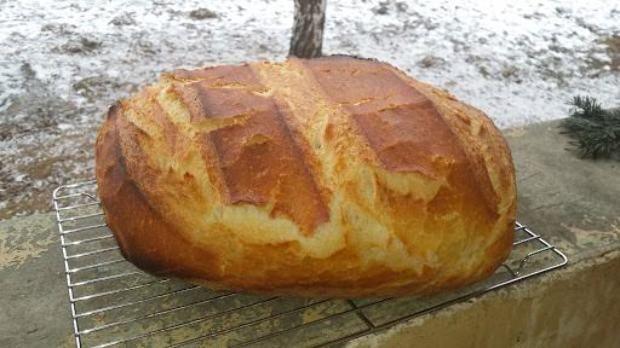 Boros Vali, az egyszerű szabolcsi háziasszony már nagyon sokszor bizonyított. Legnagyobb dobása talán mégis az, hogy megtanítja kenyeret sütn...