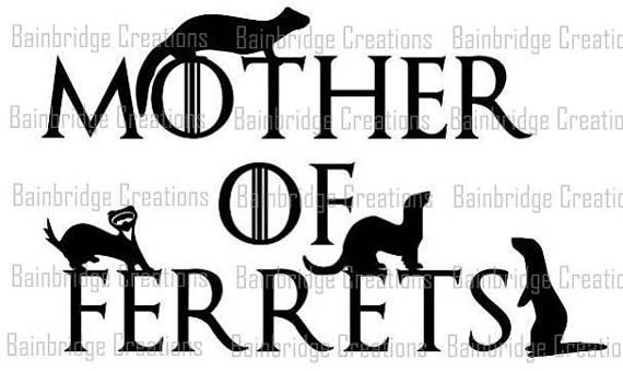 Mother of Ferrets