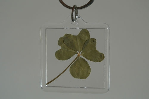 real 4 leaf clover keyring / st patricks day / genuine / good luck / gift
