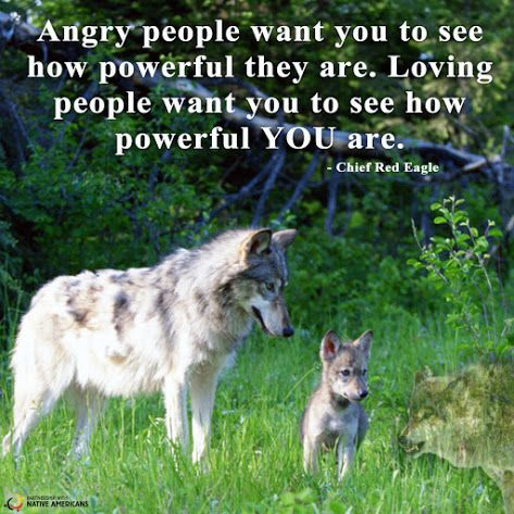Wise words!  Partnership With Native Americans / Remember Native Americans - Google+