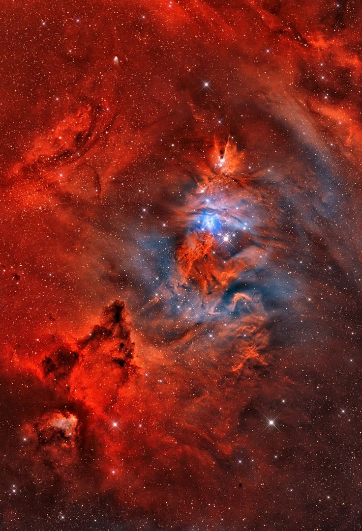 Christmas Tree star cluster or NGC 2264 Be out in space