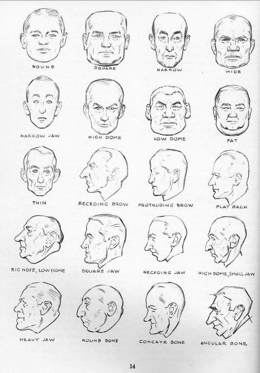 Here are some useful head perspective reference sheets. I'll be adding more to this post later.