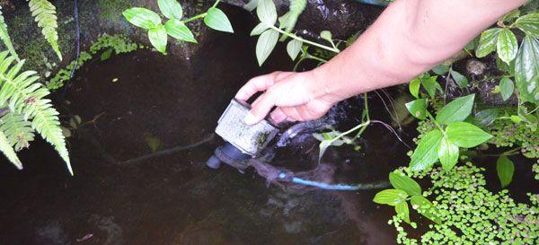 Cabeza de poder bomba para estanque
