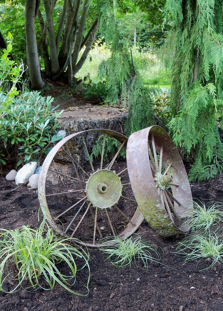 Old Tractor Wheels In The Garden