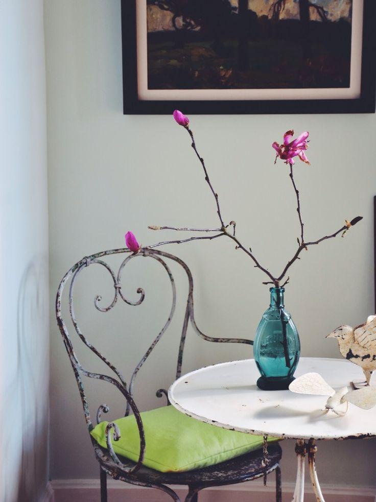Ramo de Magnolia Liliiflora