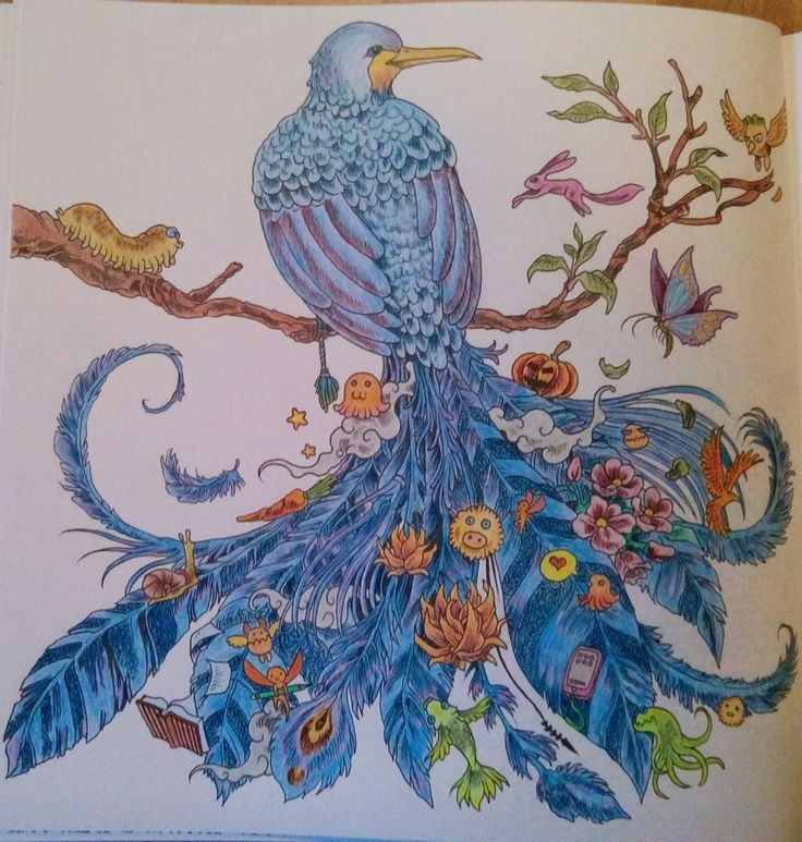 61 Best Amimorphia Colouring In Images On Pinterest
