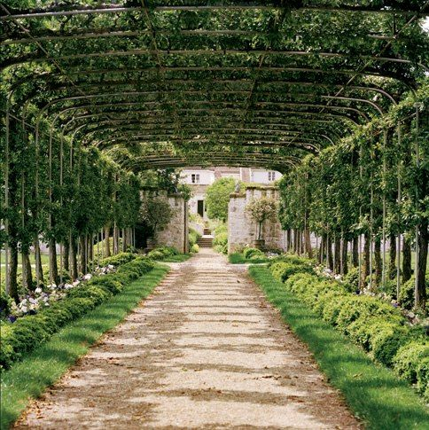 Bunny Mellon's Secret Garden. An arbor of pleached Mary Potter crab-apple trees leads to the garden entrance.