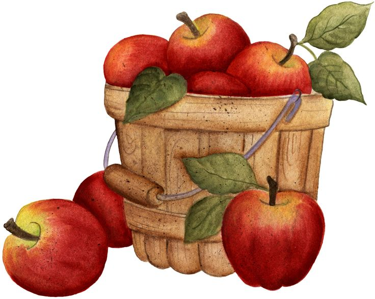Yahoo Image Basket Of Apples Apple Clip Art Pinterest Apple S