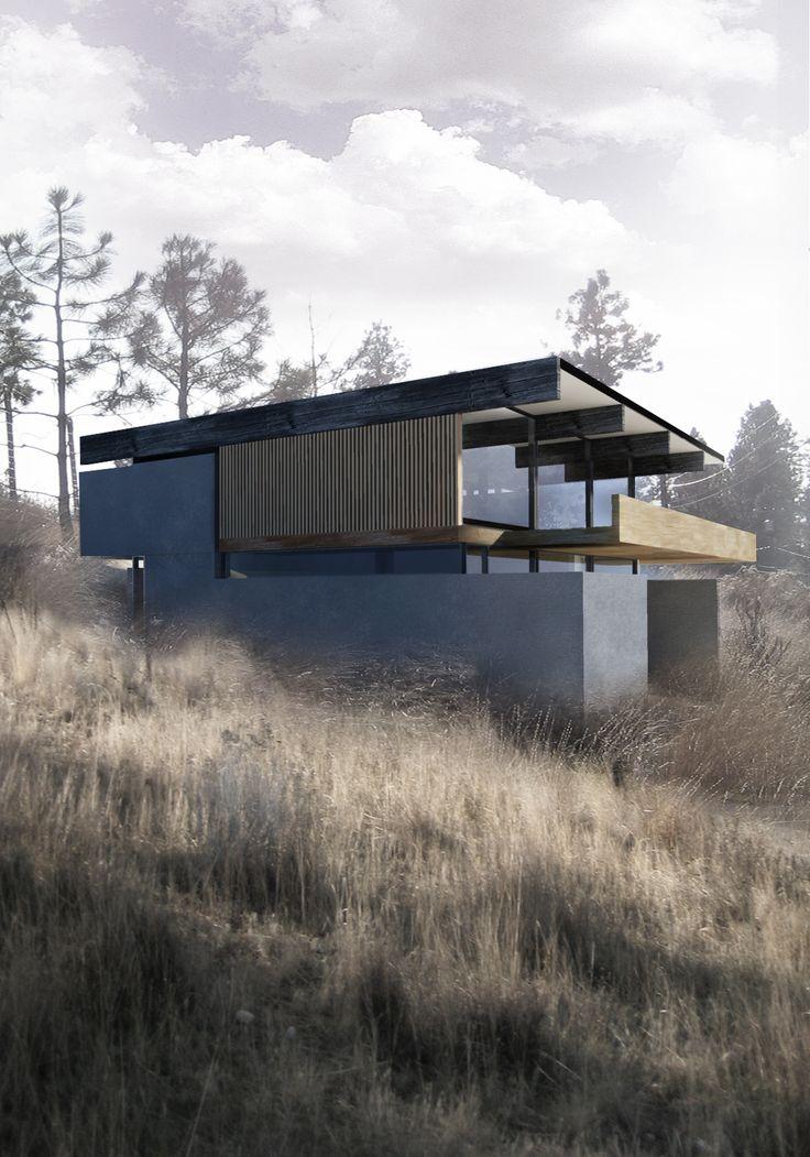 Best 25 Modern wood house ideas on Pinterest  Modern