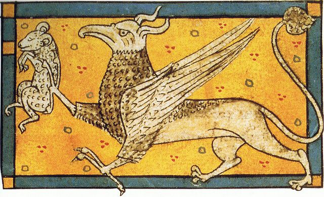 Medieval art | Griffin with prey, Bestiary, BNF Ms. lat. 3630, fol 77; ca. 1285 AD