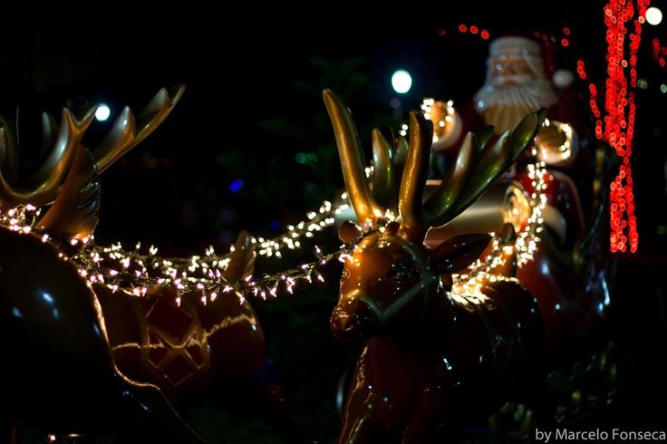 Christmas @Praça da Liberdade