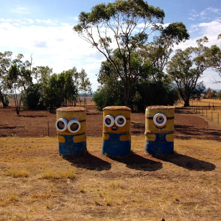Edgeroi NSW on the Newell Highway