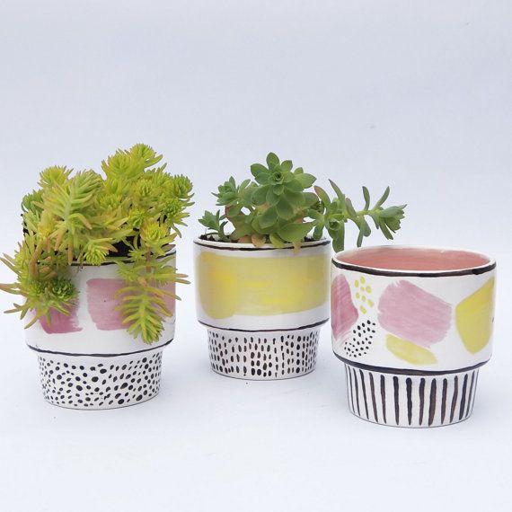 Unique Succulent Planter, Unique Indoor planter, Made to Order, Set of 3
