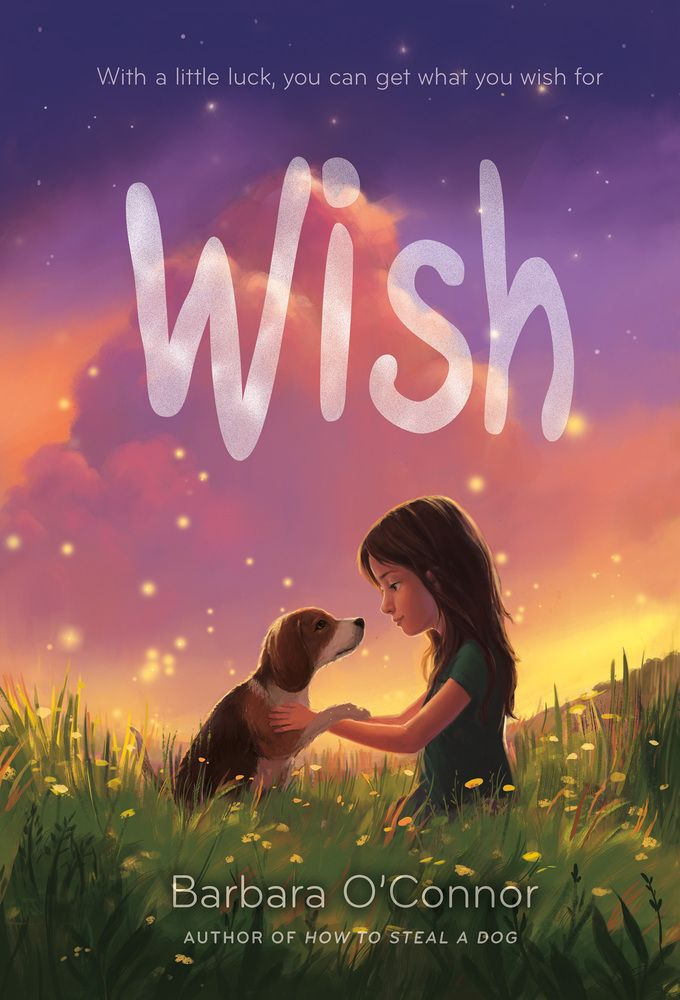 Watch. Connect. Read.: Happy book birthday to Barbara O'Connor's WISH!