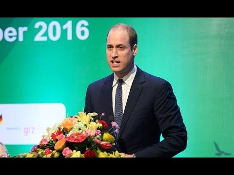 """Prince William speech about Illegal Wildlife Trade during Hanoi conference Prince William speech about Illegal Wildlife Trade during Hanoi conference The Duke of Cambridge has delivered a powerful speech urging governments around the world to protect endangered animals. Speaking at the Hanoi Conference on Illegal Wildlife Trade on Thursday Prince William expressed his concern over the """"horrifying rate"""" with which vulnerable species are being killed. Watch The Duke call for action to better…"""