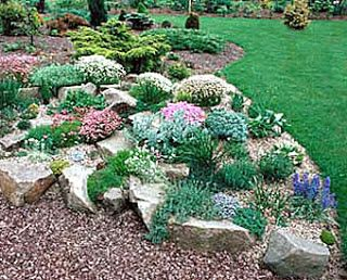 46 best Rock Gardens images on Pinterest Flower gardening