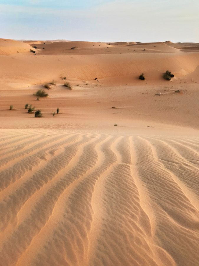 Pin On Chapterhouse Dune