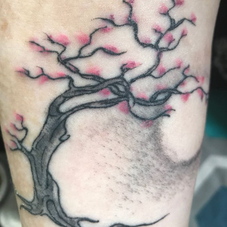 25 best ideas about scab healing on pinterest wood bark for Best way to heal a tattoo
