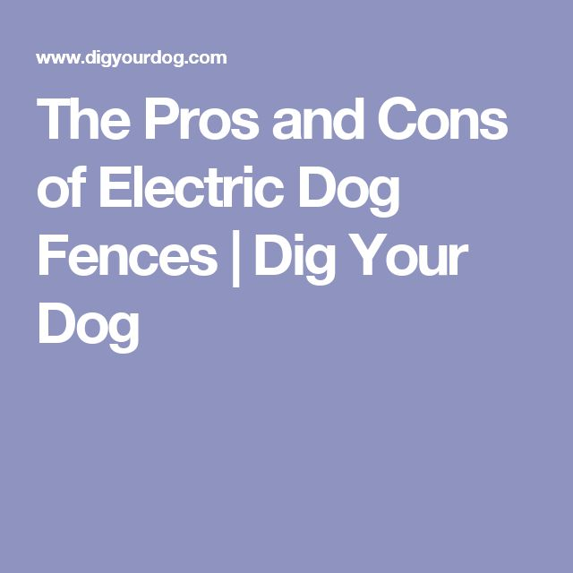 17 Best Ideas About Dog Fence On Pinterest Pet Barrier