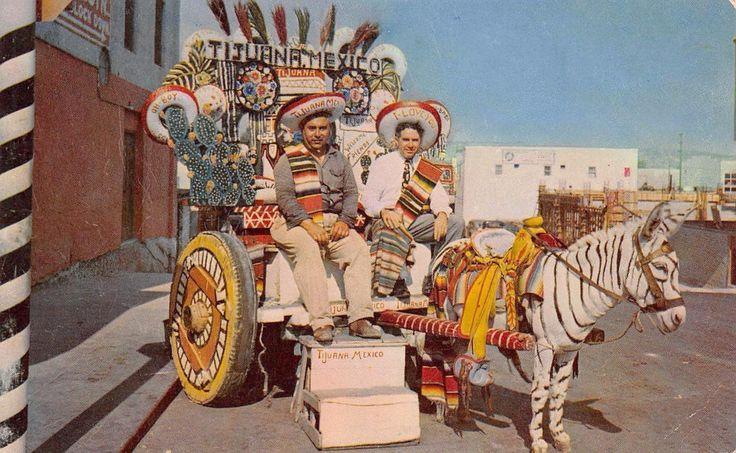 TIJUANA Colorful Donkey Cart Zebra Mexico Vintage Postcard ca 1950s | eBay