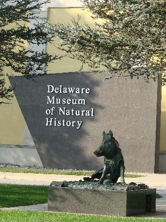 Delaware Museum Of Natural History Free Admission