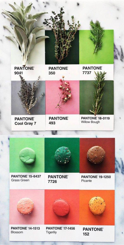 Lucia Litman #PantonePosts project