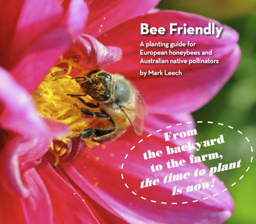 Bee Friendly: A planting guide for European honeybees and Australian native pollinators