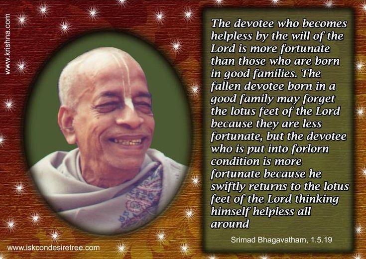 Fortunate Devotees For full quote go to: http://harekrishnaquotes.com/srila-prabhupada-on-fortunate-devotees/ Subscribe to Hare Krishna Quotes: http://harekrishnaquotes.com/subscribe/ #Devotees