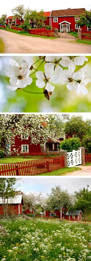 """Romantic gardens at Astrid Lindgrens """"Barnen i Bullerbyn"""", Sevedstorp, Småland, Sweden"""