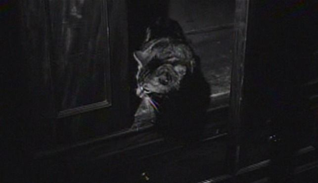 A tabby cat startles Miss Marple when it steps out of a wardrobe unexpectedly in Murder Most Foul (1964).