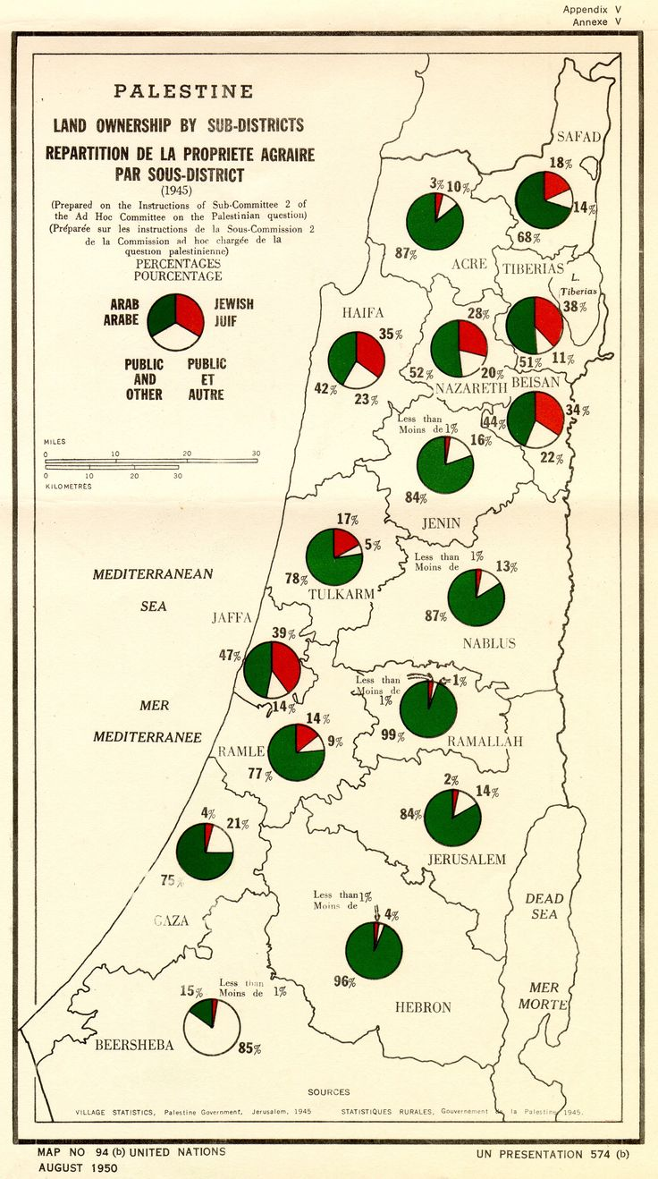 a violent history in israeli nation Israel's earliest modern history as a nation begins the ottoman empire (turkey) had occupied israel but was arrested when he participated in a violent.