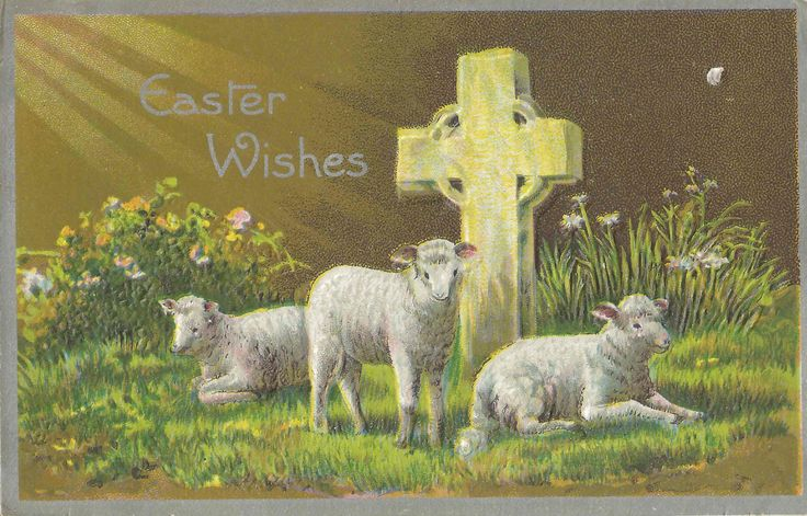 Antique 1911 Easter Wishes Postcard Featuring Beautiful Lambs Resting Next Near a Cross | Embossed | Divided Back | Unposted | Easter Card by StructureandSpice on Etsy