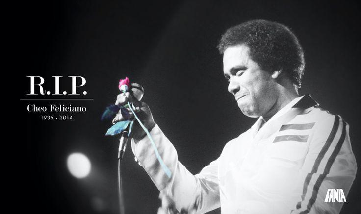 "Cheo Feliciano ""El Raton"" Fania All Stars PR 2013 (con Jorge Santana)"