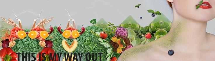 Achtung, Pflanzenfresser! | Vegan für Anfänger