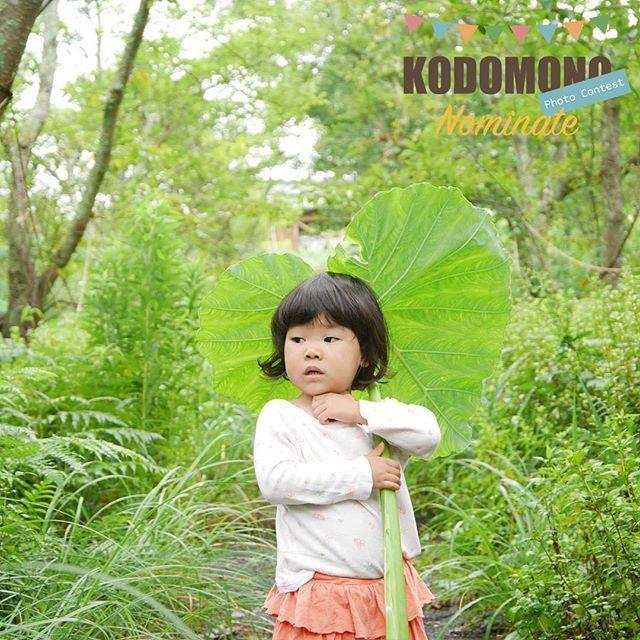 【kodomono_photo】さんのInstagramをピンしています。 《@hisakoyama  こちらは@hisakoyamaさんの一枚です。  妖精みたいに葉っぱの傘でお散歩☂️ . @hisakoyamaさん「#コドモノ 」のハッシュタグ付けありがとうございました。 . BiziCardにてフィーチャー記念フォトカードをコンビニプリントできます。詳細はプロフィール欄のURLへ。 . . ゆるくフォトコン開催してます  いつもカワイイお写真を多数投稿いただきありがとうございます。 こんなに素敵な写真がいっぱいなんだもの、何かコンテスト企画やりたい! ということでコドモノ!では以下のフォトコンを開催しています✨ 育児コミックエッセイ「5歳だって女。」を著した前川さなえさんに直接審査していただけるチャンス✨  従来通り@kodomono_photoをフォローの上ハッシュタグ「#コドモノ」をつけて応募してください。フィーチャー写真=ノミネート作品 となります。 ======================= 賞品総額30万円超! コドモノ!PHOTO大賞 2016…