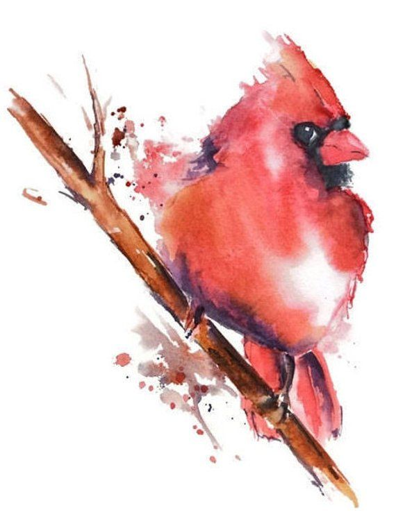 Cardinal Watercolor Art Print Nancy Knight Red Bird Watercolor