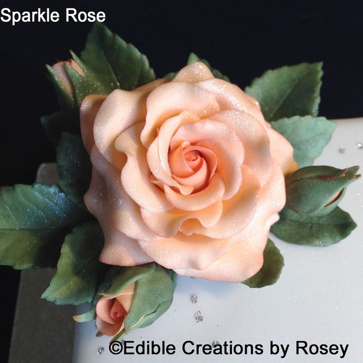Pale peach sugarpaste rose with subtle sparkle by Edible Creations by Rosey