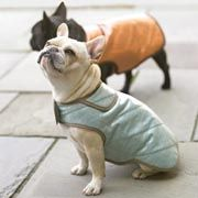 free sewing patters for dog coats