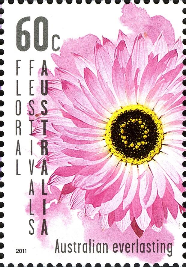 Australian Everlasting. 60c Australian stamp 2011