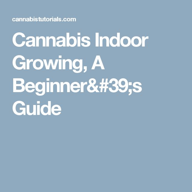 Cannabis Indoor Growing, A Beginner's Guide