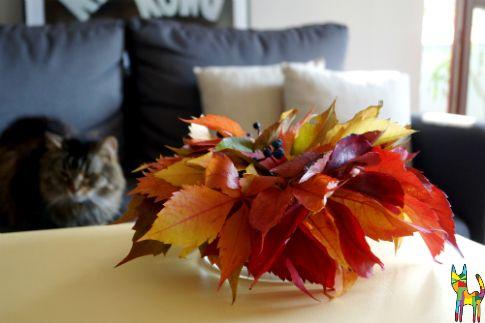 Do you like autumn? ;-) #autumn