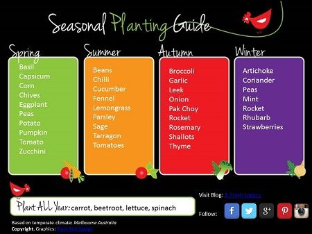 Pretty, but would use a lot of ink to print. Make a desktop instead? (Seasonal Vegetable Planting Guide - Printable)