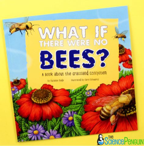 What if There Were No Bees? and Ecosystems.  Use this picture book, free printables, and ideas to teach your students a lesson about the importance of bees in a grassland ecosystem.  Learn more!