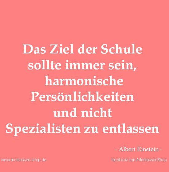 Zitat von Einstein zum Thema Schulen.