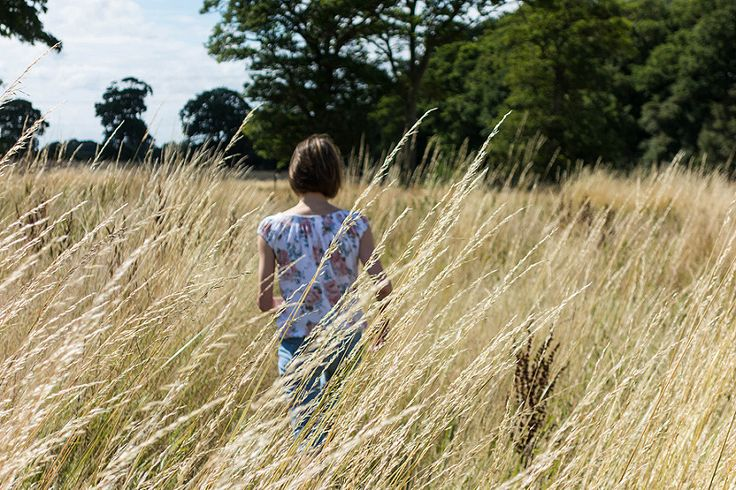 Grass Photo - Visual Hunt