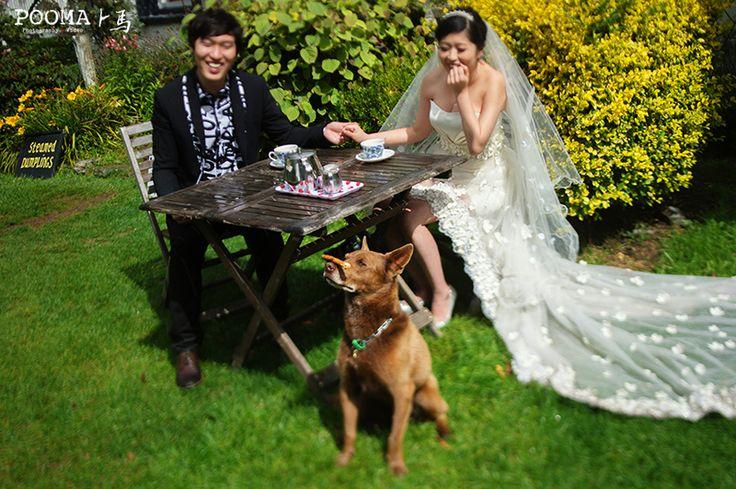 Destination Wedding - THE PS STUDIO