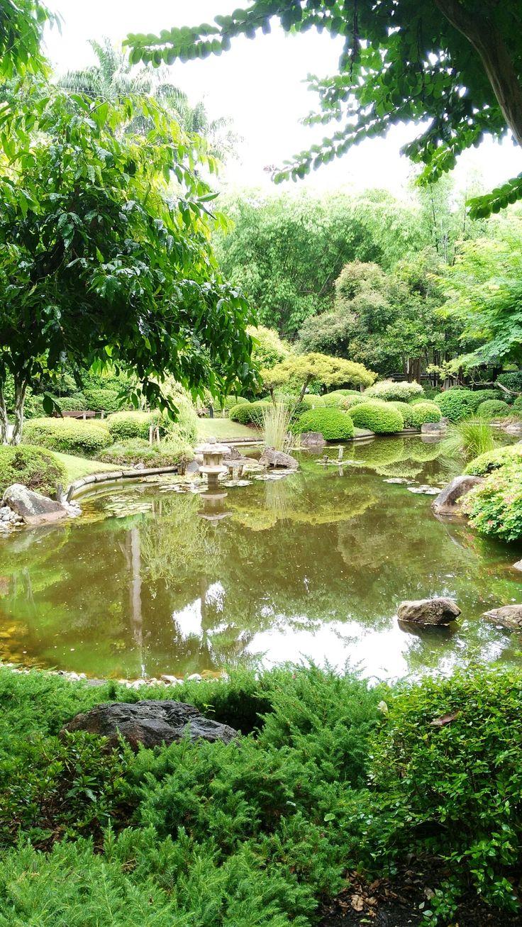Japanese garden @ Brisbane Botanic Gardens