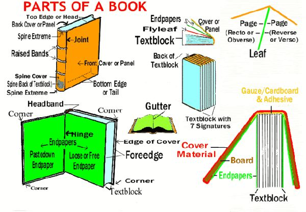 all the parts of a book-- I love the library and books!